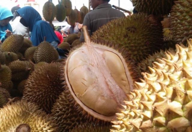 Festival Durian Kakap